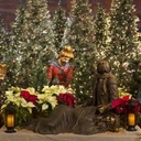 Advent Communal Reconciliation 7pm Tuesday, December 10